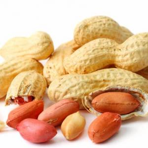 Early Exposure To Peanuts Helps Prevent Allergies In Kids