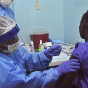 Twists, Turns, Eventually Lead to Promising Ebola Vaccine
