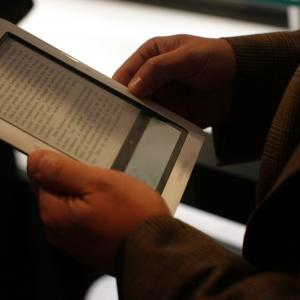 In E-Books Fight, NY Appeals Court Seeks a Bully